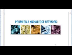 Prumerica Financial Intro