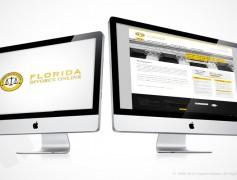 Florida Divorce Lawyer Website