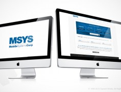 MSYS Website