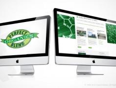 Perfect Blend Website
